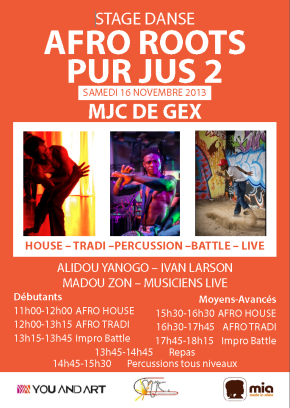 stage afro  roots pur jusn°2